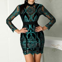 Occassional Embroidery Long Sleeve Mini Dress