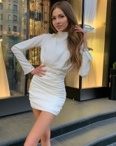 Plain Solid Long Sleeves High Neck Ruched Mini Dress