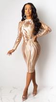 Plus Size Pailletten Langarm, figurbetontes Kleid