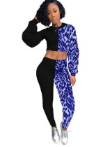 Leopard Print Hoody Crop Top and Pants Set