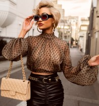 Print Polka High Neck Crop Top with Pop Sleeves