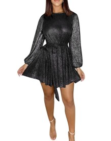 Sequins Round Neck Long Sleeves Skater Dress