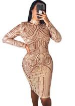 Payetler Altın Uzun Kollu Midi Elbise