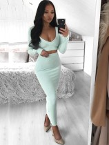 Solid Color Long Sleeve Crop Top and Pencil Skirt