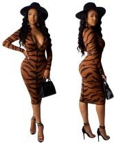 Tiger Print Langarm Midi Kleid