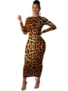 Leopard Print Long Curvy Dress with Sleeves