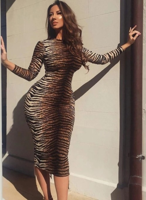 Tiger Print Long Sleeves Midi Dress