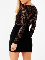 Lace Upper Black Long Sleeve Club Dress