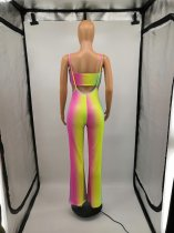 Sexy Multi Color Tube Top and Pants Two Piece Set
