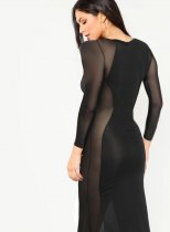 Black Sexy Long Sleeve Mesh Gown