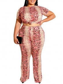 Plus Size Leopard Crop Top and Pants