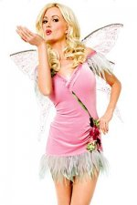 Sexy Fairy Adult Costume 10483