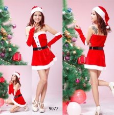 Mrs Santa Helper Costume
