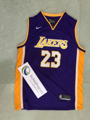 Los Angeles Lakers #23 LeBron James Purple Gold Stitched NBA Jersey