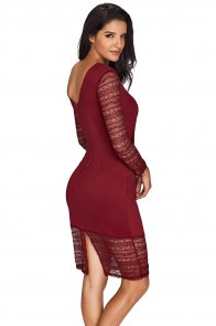 Rose Embroidery Wine Lace Mesh Bodycon Dress