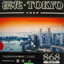 Kokutaku Tokyo 868 Japanese Sponge