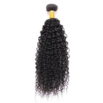 Beauty Malaysian Curly Virgin Hair 100g