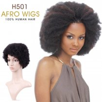 Popular Afro  Wig Curl Hairstyle