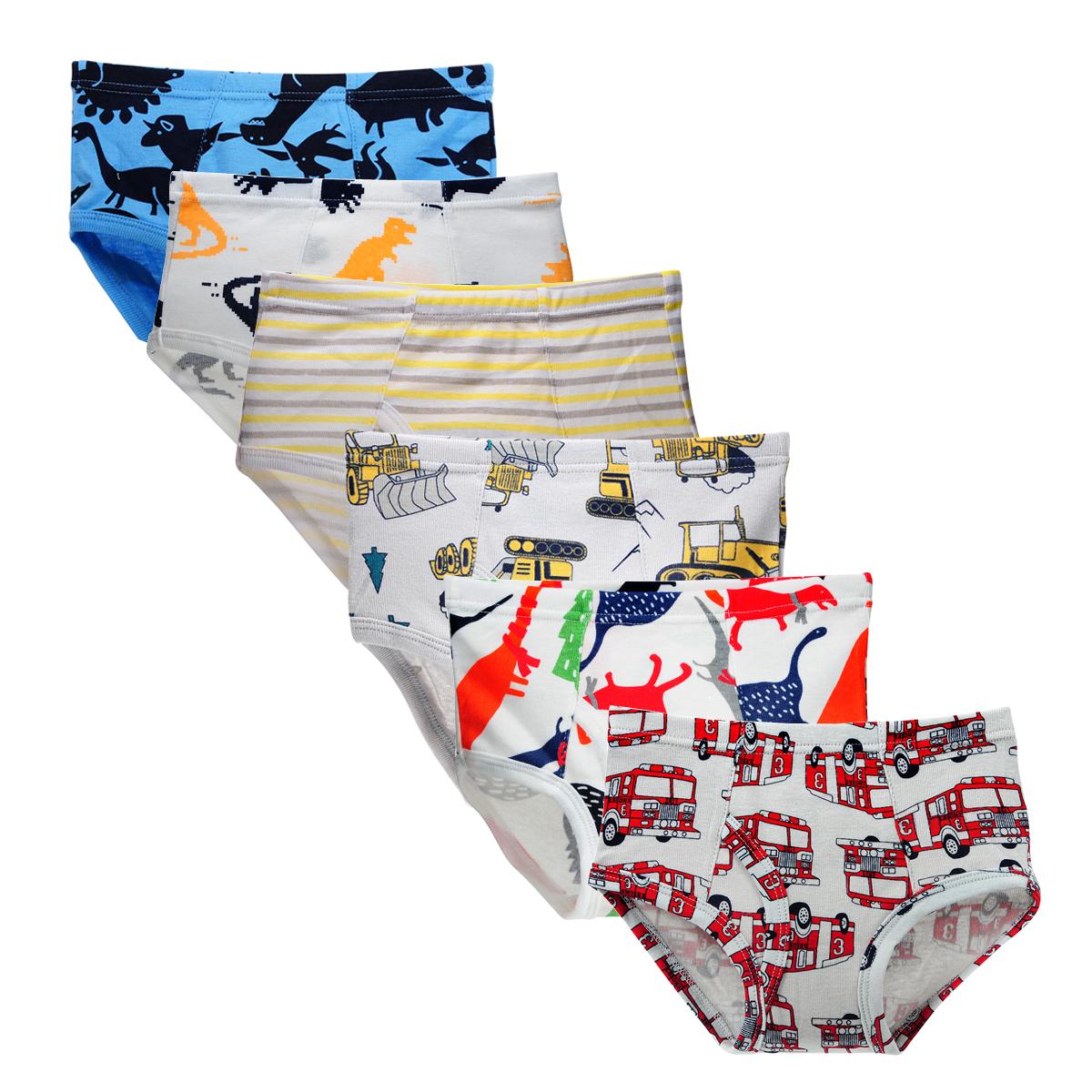 Closecret Kids Series Soft Cotton Underwear Little Boys Assorted Briefs Pack of 6