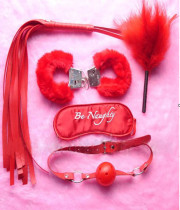 Be Naughty Sexy Accessories TY047