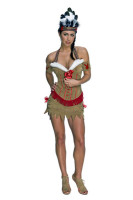 Native American Princess Costume L1395