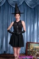 Fever Bewitching Vixen Ladies Halloween Fancy Dress L15283