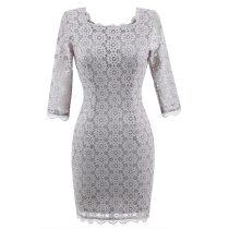 Square Collar Lace Bodycon Dress