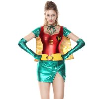 Lady Robin Costume