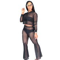 """The """"Cassie"""" Mesh 2-Piece Cover Ups"""