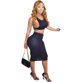 Mesh Vest Top And Skirt Two Sets