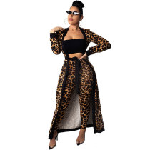 Leopard Animal Queen Pant Set