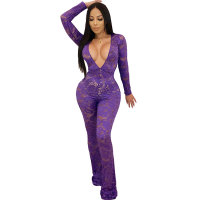 Long Sleeve V Neck Perspective Lace Jumpsuit