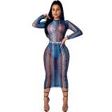 See Through Mesh Print Mid Dress