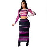 Sexy Mesh Printed Two Piece Skirt Set