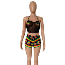 Africa Mesh See Through Crop Top and Shorts