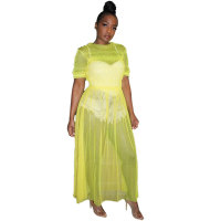 Net Yarn See-Through Solid Color Long Dress