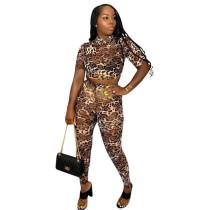 Leopard Two Piece Sheer Party Clubwear