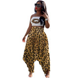 Leopard Wrapped Crop Top and Harem Pants Two-piece