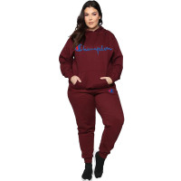 Casual Embroidered Hooded Two Piece Set