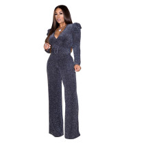 Casual V Neck Pleated Jumpsuit