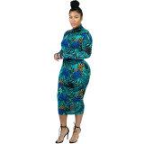 Casual Printed Zipper Mid Dress