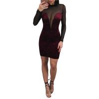 Velvet Backless Perspective Mini Dress