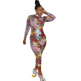 Casual Leopard Print Mid Dress