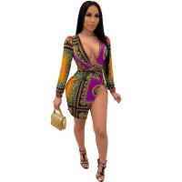 Sexy Printed V Neck Slit Dress