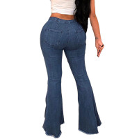 Distressed Hole Flare Jeans