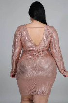Plus Size Sequins Long Sleeve Club Dress