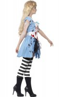 Ladies Zombie Malice Alice Costumes