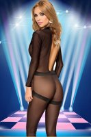 Sheer Catsuit With V-Detail L15516