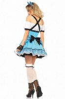 Rebel Alice Costume In Wonderland Costume