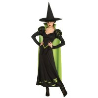 Adult Wicked Witch Of The West Costume 15527